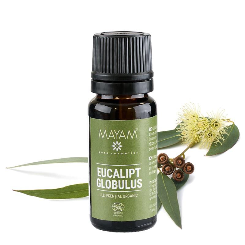 Ulei esențial de Eucalipt Globulus 10 ml