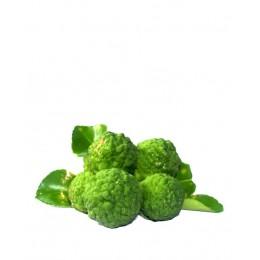 Ulei Esențial Bergamota Pur Organic ECOCERT 10 ml | Uleiul Echilibrant
