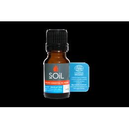 Amestec de Uleiuri Esentiale Easy Breathe Pure 100% Organice ECOCERT 10 ml | Blend Respiratie Usoara